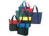 PMS-163 - Poly Zipper Tote Bag